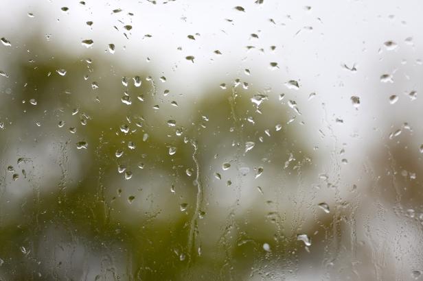 Rainy Window Pane